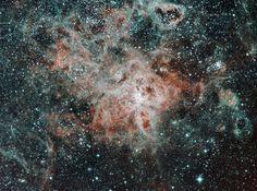 Снимок The Tarantula Nebula фотографа Scott Carnie-Bronca на конкурсе фотографий ночного неба 2016 CWAS AstroFest The David Malin Awards