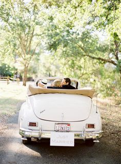 {Out for a Sunday Drive}: Olive, Peach, Antique Gold, Camel + White