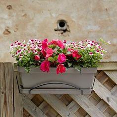 Jardinière Roméo | Poetic Jardin