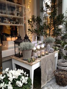 Weihnachtsausstellung in der Butik Blooms   - inspiration for winter acc's inside & out