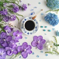 ~ Spring Pirouettes ~ Morning Coffee & Blossoms