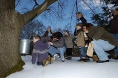 Maple Syrup Boil-Down Great Falls, Virginia  #Kids #Events