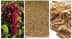 Musíte dodržovat bezlepkovou dietu? Zajímá vás zdravá výživa? Jste vegetariáni nebo vás trápí vysoký krevní tlak? Zkuste do svého jídelníčku zařadit amarant.