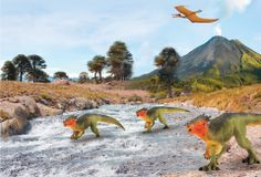 A show case for Safari Ltd prehistoric animal models.