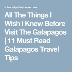 After spending 3 weeks exploring the Galapagos here are the 11 things I wish I had known before leaving. Your ultimate Galapagos travel tips. Galapagos Islands, I Wish I Knew, Quito, I Know, Travel Tips, Places To Go, Adventure, Reading, Ecuador