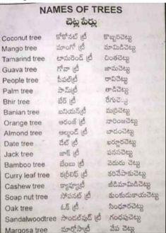 Dates Tree, Guava Tree, Mango Tree, Rangoli With Dots, Gernal Knowledge, Learn English Words, English Vocabulary, Self Improvement, Language