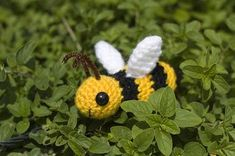 I found Bazzil just buzzing about his business in my newly planted basil this weekend. He was having quite a feast on the flowers of my other herbs (just look at the size of him!) and was hoping to...
