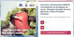 Clique no link para ver o programa do curso e também como concorrer ou como garantir a sua vaga através de uma doação para o Instituto Mar Adentro.  http://maradentro.org.br/cursos-livres/aves-marinhas Ou neste link http://upvir.al/ref/J7507022 para ir direto para a página do concurso