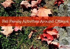Ottawa_Mommy_Club_Family_Fall_Activities_in_Ottawa _Feature_Photo
