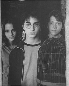 The Trio: Harry Potter, Hermione Granger and Ron Weasley Harry James Potter, Harry Potter Tumblr, Harry Potter World, Blaise Harry Potter, Memes Do Harry Potter, Mundo Harry Potter, Harry Potter Pictures, Harry Potter Cast, Harry Potter Universal