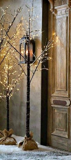 Branches with Christmas lights