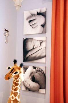 Baby photos on canvas
