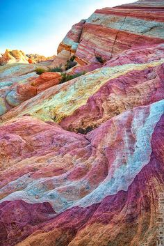 Valley Of Fire State Park near Las Vegas. This is worth the trip, get away from the glitz for a bit and check it out!!