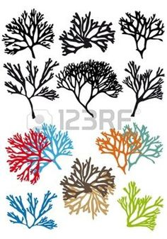 Corals Reefs Vector Set Corals reefs set, vector design elements AI EPS 8 and high resolution JPG pixel included Created: GraphicsFilesIncluded: JPGImage Layered: No MinimumAdobeCSVersion: CS Tags: animal Plasma Cutter Art, Pet Guinea Pigs, Free Business Card Templates, Wall Drawing, Metal Artwork, China Painting, Silhouette Vector, Mural Art, Illustrations