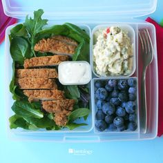 chicken tenders with spring baby greens and blue cheese dressing with potato salad and blueberries for dessert