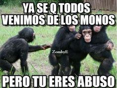 imagenes de monos graciosos con frases divertidas