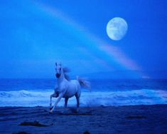 Disseminating Gibbous Moon 3 and a half  days after the Full Moon (until the last quarter). Start work on removing obstacles in order to create anew. A good time to let go of the past enabling yourself to move on.