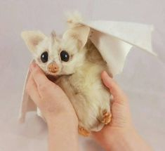 Handcrafted creatures, made with care. I am a soft sculpture artist, making lovingly hand-crafted, poseable fantasy animals and creatures that capture the imagination. Needle Felted Animals, Felt Animals, Cute Baby Animals, Animals And Pets, Funny Animals, Needle Felting, Bb Chat, Baby Bats, Cute Bat