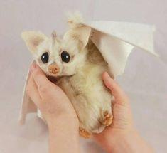 Needle Felted White Bat