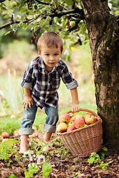 Country Living ~ boy and apples
