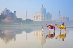 The most romantic places in India - India has to be one of the world's most romantic destinations. Its beguiling mix of ancient forts, pretty palaces, shimmering lakes and gorgeous beaches is bound to get many a traveller feeling the love. Places Around The World, Oh The Places You'll Go, Places To Travel, Places To Visit, Around The Worlds, Tourist Places, Romantic Destinations, Top Destinations, Romantic Travel