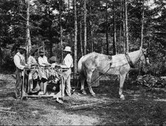 Stringing tobacco leaves for curing, tobacco research experiment station, Oxford, N.C.. From NCSU Libraries