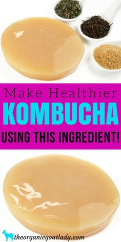 Do you want to have the healthiest, best tasting Kombucha? Then you need the healthiest, best tasting tea blend to make it with! This tea blend is. Green Tea Kombucha, Best Kombucha, Kombucha Drink, Kombucha Flavors, Kombucha Scoby, Probiotic Drinks, Kombucha How To Make, Flavored Kombucha Recipe, Kombucha Benefits