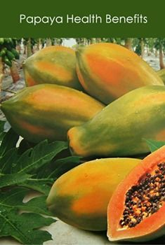 The #papaya is a #tropical_fruit that is high in #nutrients and #antioxidants. This is a review of papaya and its health benefits. #PopularFood #health_benefits #vitamins Papaya Health Benefits, Popular Recipes, Popular Food, Kinds Of Diseases, Healthy Recipes, Healthy Food, Healthy Life, Diet