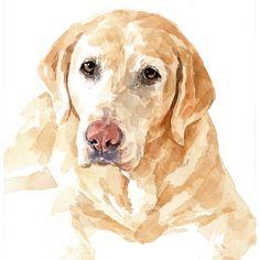 Lab dog portrait watercolor