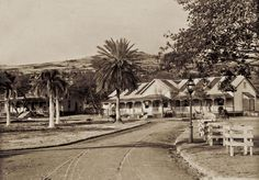 Photo Gallery: Honolulu in 1888 - Hawaii
