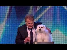 Ο σκύλος που μιλά στο Britain's Got Talent 2015! - YouTube
