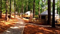 You work hard and play hard, so when it comes to camping, take it easy. You can camp or glamp it up in a yurt at Atlanta's closest state park, Sweetwater Creek State Park. Yurt Camping, Glam Camping, Glamping, Sweetwater Creek State Park, Rv Travel, State Parks, Georgia, Country Roads, Things To Come
