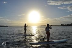 Up for SUP? Rent a paddle board and explore #bastimentos! Maybe you'll even see dolphins who knows!#bubbashouse #bocasdeltoro #panama #ocean #adventure #standuppaddle #explore #ocean #studentuniverse #fun #photooftheday