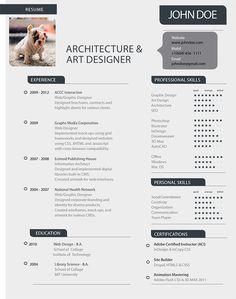 resume advice design art shannonoleencom - Infographic Resume Builder