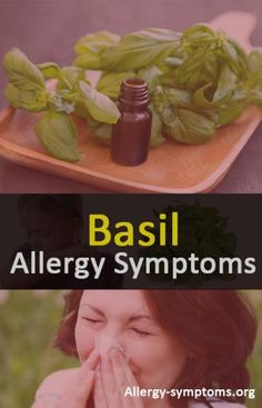 Basil Allergy Symptoms and Diagnosis   Excess eating isn't good for health. Natural ingredients, which are renowned for its healing benefits can stimulate allergic when taken in excess amount.  http://allergy-symptoms.org/basil-allergy/