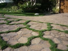 Driveway Paver with Grass Look