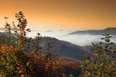 North Carolina Mountains -would like to explore this state.