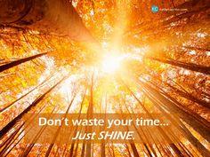 Just SHINE.