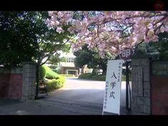 (Phim Nhật Bản 2005) Một Lít Nước Mắt Vietsub Full HD Tập 01 - Nhật Ký A...