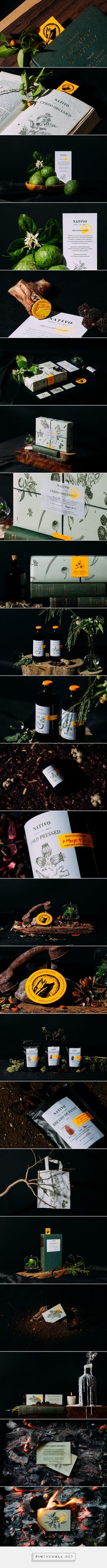 NATIVO Organic Mexican Food Branding and Packaging by Candid Brands | Fivestar Branding Agency – Design and Branding Agency & Curated Inspiration Gallery