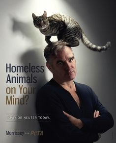 PETA and Morrissey. . . Two for one... Now it just needs Bono