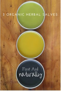 All Purpose healing balm, Sore Muscle Rub, and Black Drawing Salves - Pollinator Pack salve kit, a fist aid bag must-have!