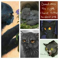 Yellowfang *requested