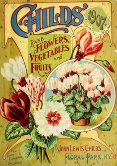 Childs' rare flowers, vegetables, and fruits / - Biodiversity Heritage Library