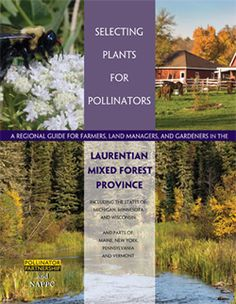 Pollinator Partnership - Check out the guide for you area. In Western NY we are in the Laurentian Mixed Forest  Province.