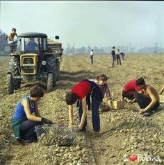 I LOVE RETRO POLAND!❤ Mk1, Poland People, Native Country, Keep Smiling, Socialism, Vintage Country, Carpe Diem, Retro, Romania