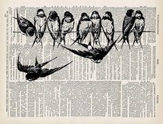 Bird Art Print, Swallows, Dictionary bird print, Upcycled Book page, Vintage print on dictionay book page, Art Illustration, Birds on a Wire by Úna Keane