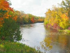 Fall Color 2014