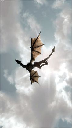 A dragon in the sky