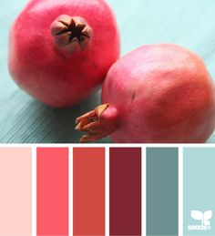 pomegranate palette - design seeds